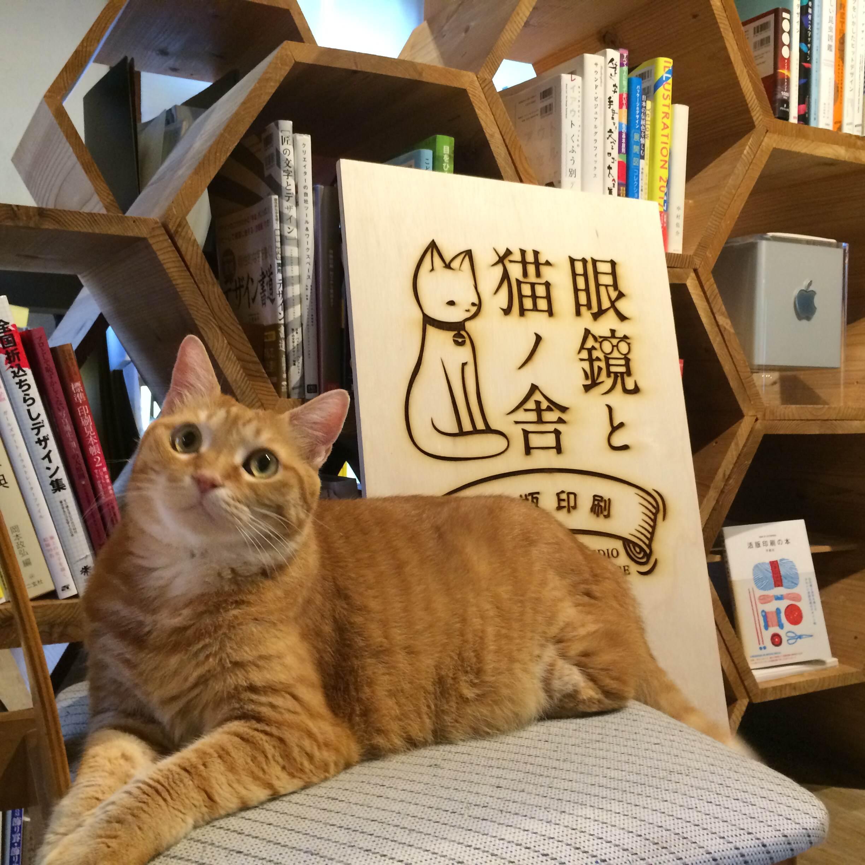 活版印刷「眼鏡と猫ノ舎」看板と愛猫